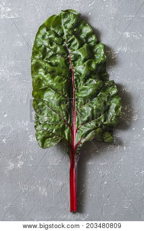 Fresh leaf of swiss chard on a gray background top view. Free space for text