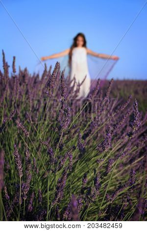 A woman spreading her shawl in a lavender field.