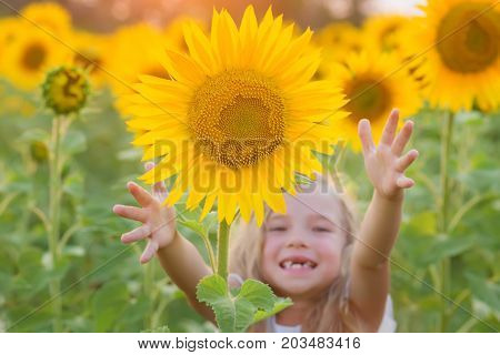 Happy little girl playing in the field of sunflowers (focus on the flower)