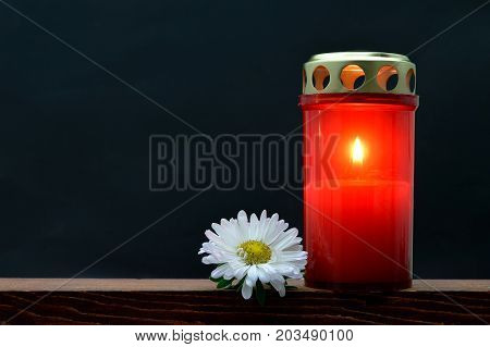 All Saints Day candle and white flower