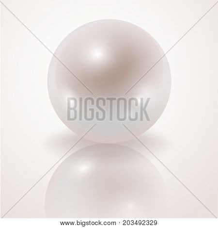 Pearl. White Pearl isolated on white background decor decoration. Realistic vector object