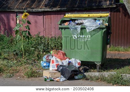 SUZDAL/ RUSSIA - AUGUST 19, 2017. Sunflower growing next to the overflowing garbage bin.