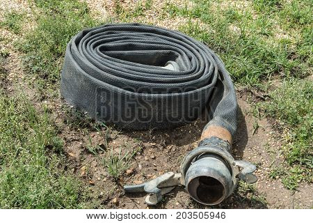 A coiled up, industrial grade, water hose.