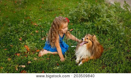 Cute little girl with a dog Sheltie breed. Best friends forever. Dog devotion. A girl and a pet are resting on the lawn in the park