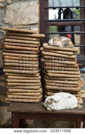 Cats Sleeping On A Table In The Traditional Village Of Platamonas Greece