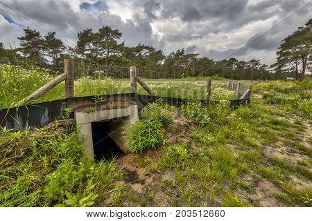 Wildlife Underpass Crossing Culvert