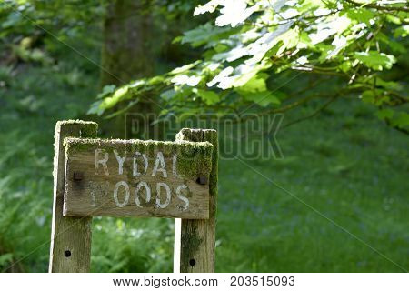 Sign in Rydal Woods, English Lake District