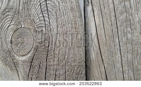 Old weathered wooden texture with rings and cracks pattern