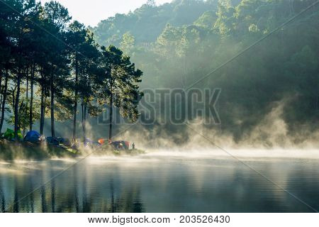 Camping and tent under the pine forest in sunrise at Pang Ung pine forest park Pang Ung Mae Hong Son near Chiang Mai Thailand