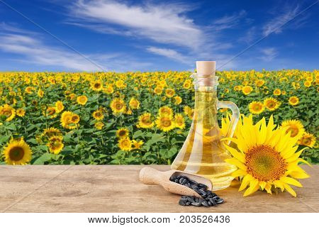 sunflower oil in glass bottle, seeds in scoop, fresh sunflowers on wooden table with natural background. Blooming sunflower field with blue sky. Agriculture and harvest concept