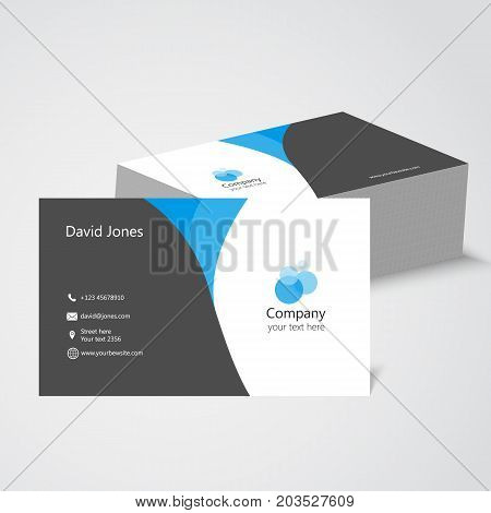 Visiting Card With Company Logo. Vector Illustration Design. Visiting Card. Vector Illustration Busi