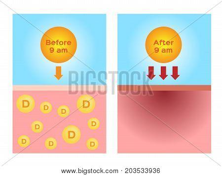 uv produce vitamin d and dangerous uv vector