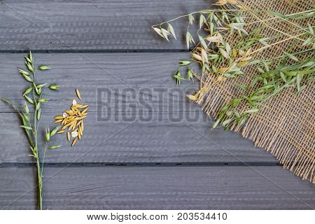 Abstract background, natural grains and spikelets of oats on wooden table, top view