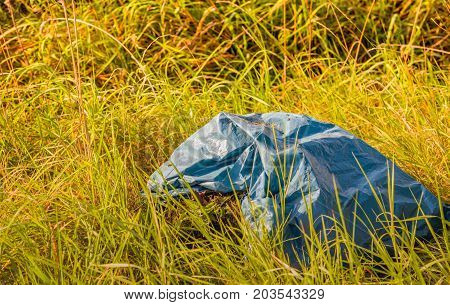 Gray plastic garbage bag with waste material dumped in the long grass of a roadside.