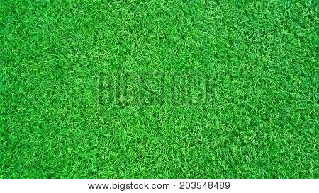 Sport Background. Decorative coating at the stadium in outdoor. Green artificial turf grass field background above football