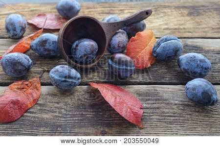 prunes rosehip prune on an old wooden table with a large wooden spoonon a wooden background with yellow red autumn leaves
