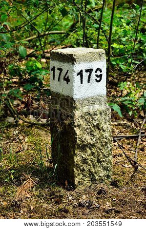 Granite pillar with number 179 in dense forest.