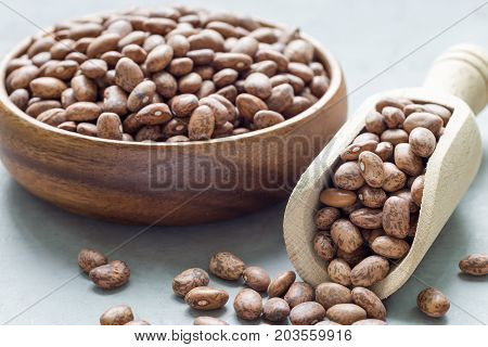 Uncooked dry pinto beans in wooden bowl and in the scoop horizontal