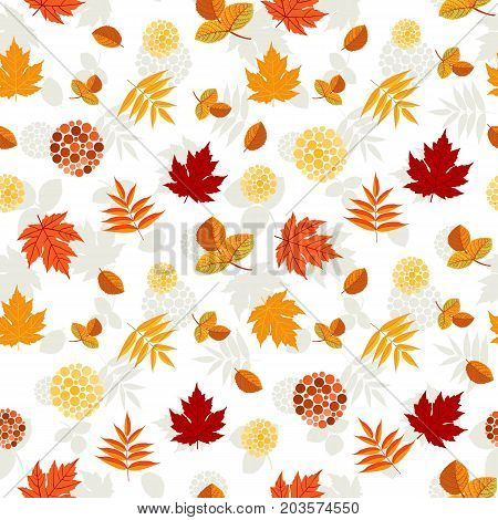 Autumn pattern with leaves of maple, aspen and rowan with red berries. Seamless ornament. Fall season theme. Vector illustration.