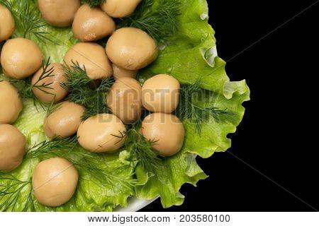 champignon mushrooms in lettuce leaves on a black background