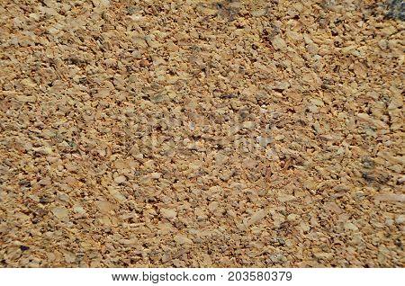 Cork Board Texture Closeup. Wood Notice Board Background