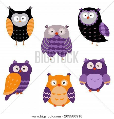 Collection of cute cartoon owls on a white background. Happy Halloween.