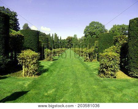 Avenue of Box and Hornbeam topiary found in Eyrignac Manor Garden, Dordogne, France