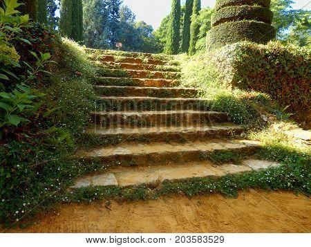A flight of old stone steps found in Eyrignac Manor Garden, Dordogne, France