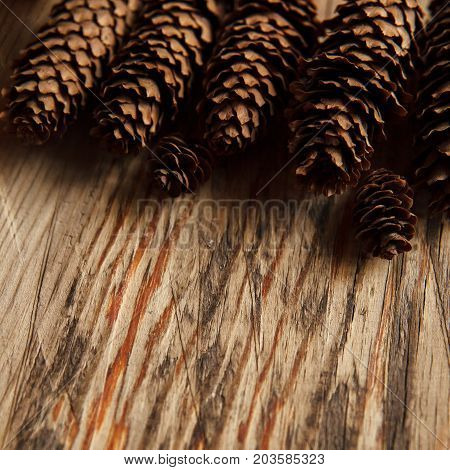 Warm Autumn Background With Copy Space. Group Of Pine Bumps On Textured Wooden Table.