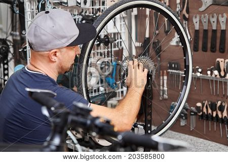 Repair technician bicycles was repaired gear bike shop. Repairer works in bike workshop.