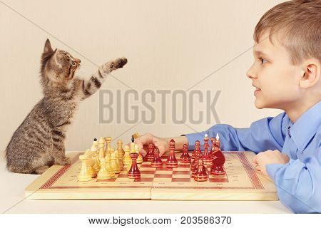 Young grandmaster with a playful kitten plays chess.