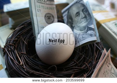 Retirement Nest Egg With Money Saved High Quality