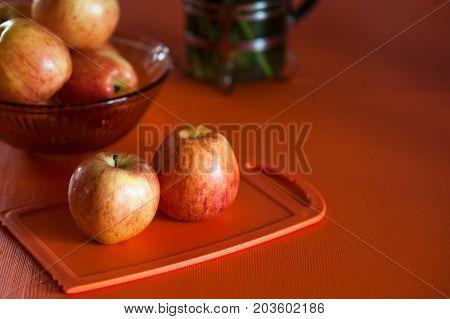 Still life in orange tones. orange tulips. Concept orange