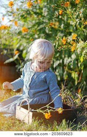 Little Toddler Girls Sitting In The Summer Garden Picking Flowers