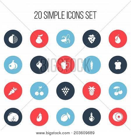 Set Of 20 Editable Fruits Icons. Includes Symbols Such As Banana, Eggplant, Root Vegetable And More