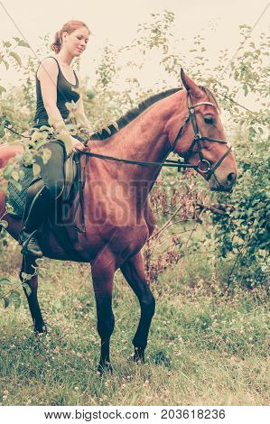 Young Woman Sitting On A Horse