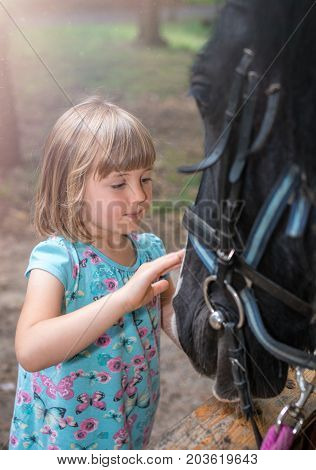 Cute little Caucasian girl stroking the head of a black horse