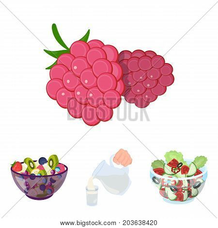 Fruit, vegetable salad and other types of food. Food set collection icons in cartoon style vector symbol stock illustration .
