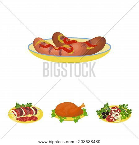 Fried chicken, vegetable salad, shish kebab with vegetables, fried sausages on a plate. Food and Cooking set collection icons in cartoon style vector symbol stock illustration .