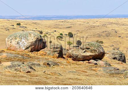 Steep dry and rocky pasture between Angaston and Murray Bridge - SA, Australia