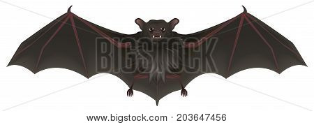 Bat vampire with sharp teeth spread its wings. Halloween symbol accessory. Isolated on white vector cartoon illustration