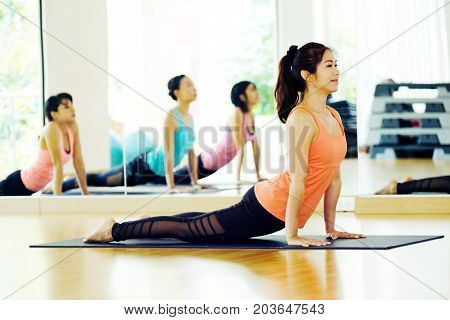 Young asian woman practicing yoga indoor studio background fitness stretching flexibility pose working out healthy lifestyles wellness well being