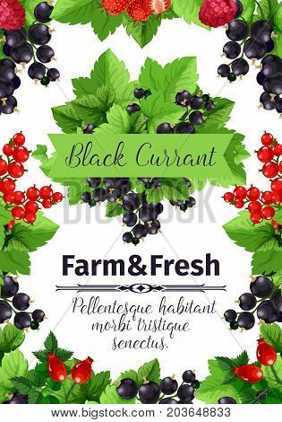 Berry and fruit banner of strawberry, black and red currant, raspberry, briar. Fresh farm berries cartoon poster, framed by fruit branches with green leaves for farm market label, food themes design