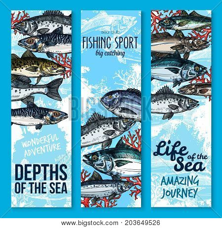 Sea fish and fishing sport club banners. Fresh seafood, salmon, tuna, perch, mackerel, dorado, sprat and navaga sketches. Saltwater ocean fish and marine animal poster for seafood restaurant design