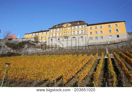 Meersburg, Germany - Nov 12, 2015: Castle And Vineyard Of Meersburg In Germany On Nov 12, 2015. It I