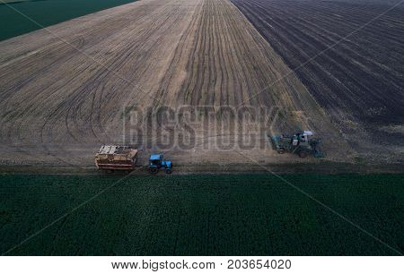 Aerial view of the combine harvester, which pours the grain into the trailer for further processing. Agricultural works. Argo industry.