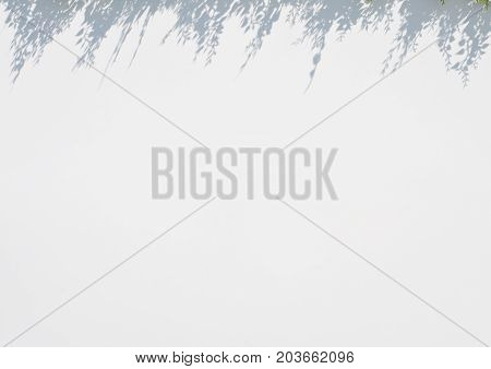 white blur background with grass shadow above