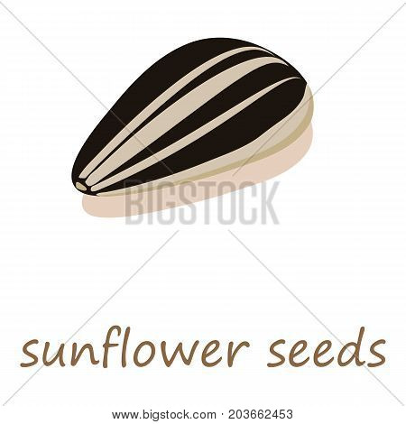 Sunflower seeds icon. Isometric illustration of sunflower seeds vector icon for web