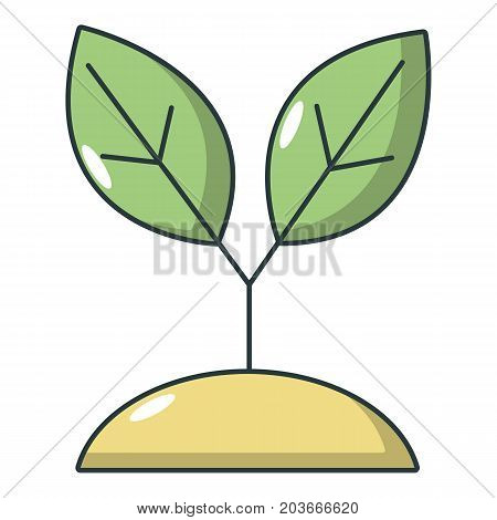 Plant sprout icon. Cartoon illustration of plant sprout vector icon for web