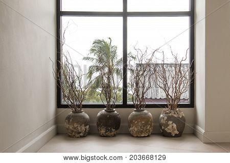 Branch in vase for decoration in home. Barnacle on vase.